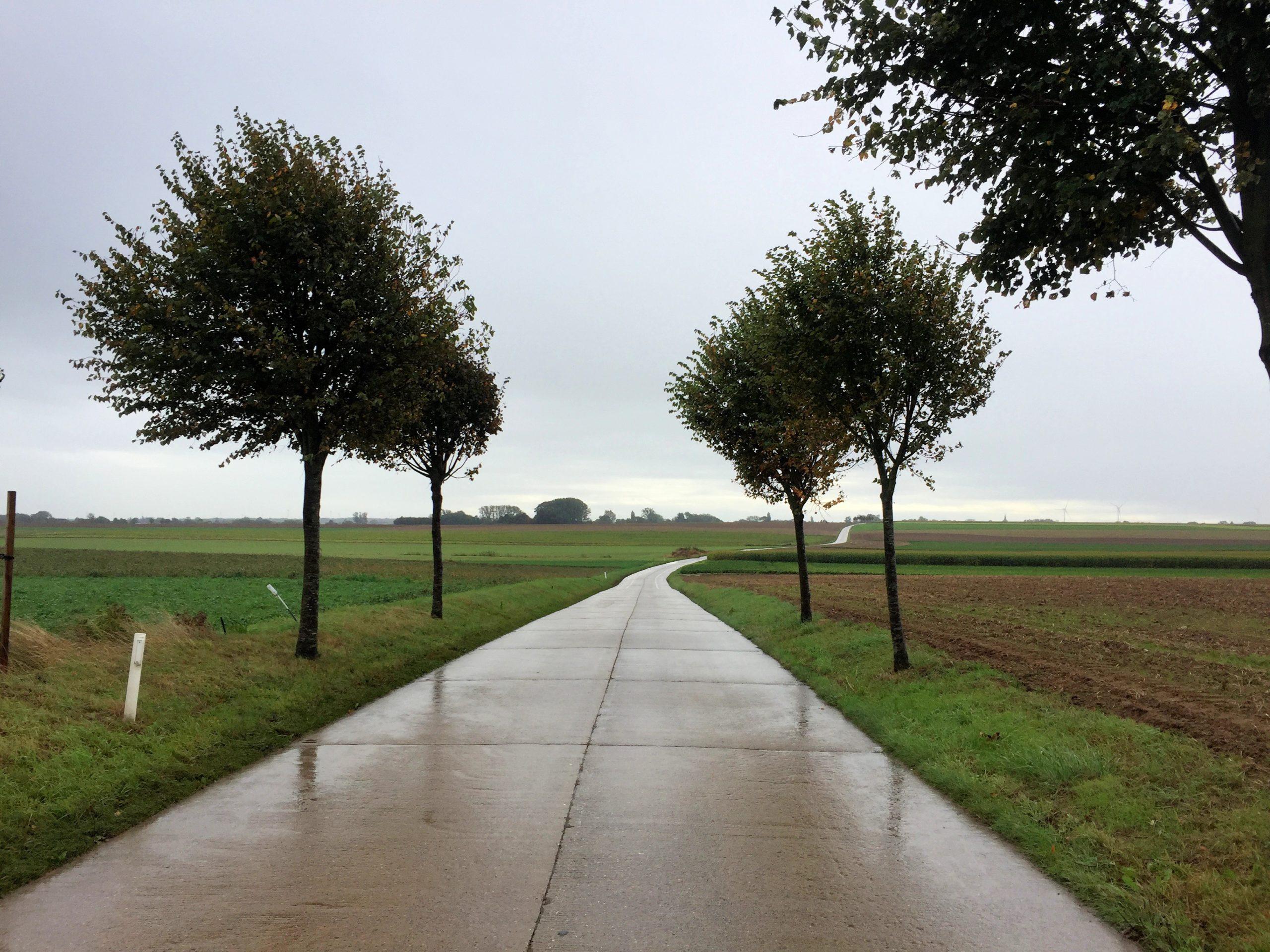 Radfahren auf belgiens Landstraßen
