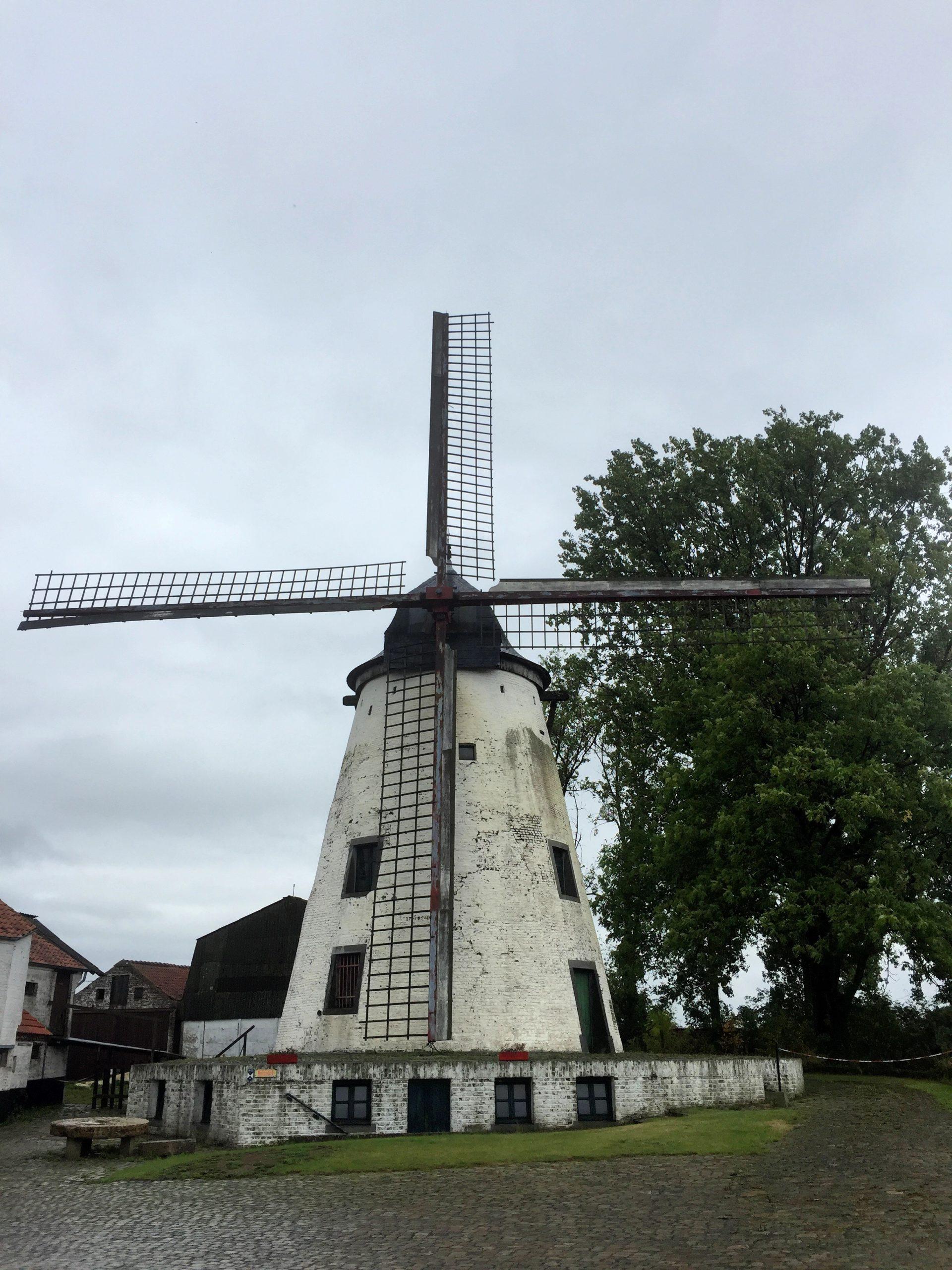 Radfahren mit Windmühlen Belgiens