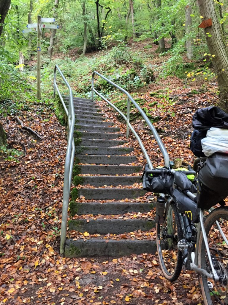 Hike-a-Bike im Wald