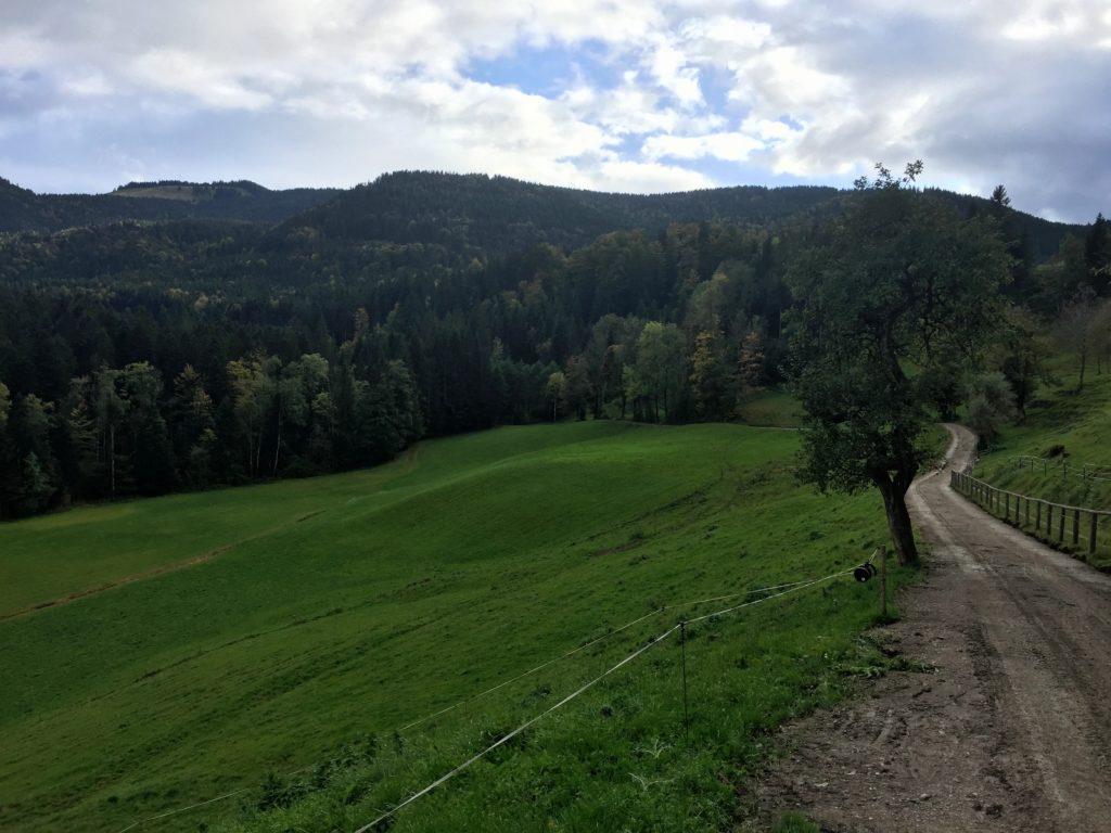 Schotterpiste mit Alpenpanorama