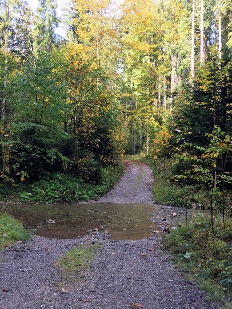 Gravel Route mit Bachquerung