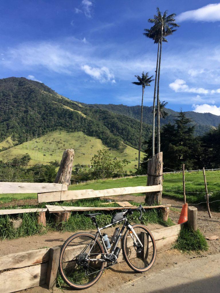 Gravel Bike posiert vor Wachspalmen im Valle de Cocora