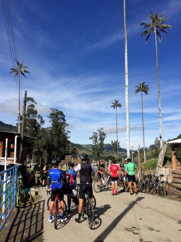 Radfahrer im Valle de Cocora zwischen Wachspalmen