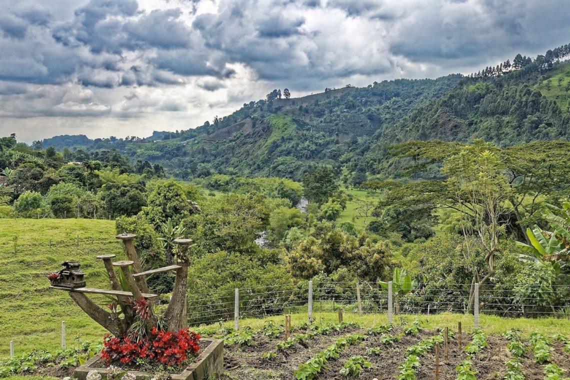 Kolumbien - Ausblick von Finca El Ocaso in Salento